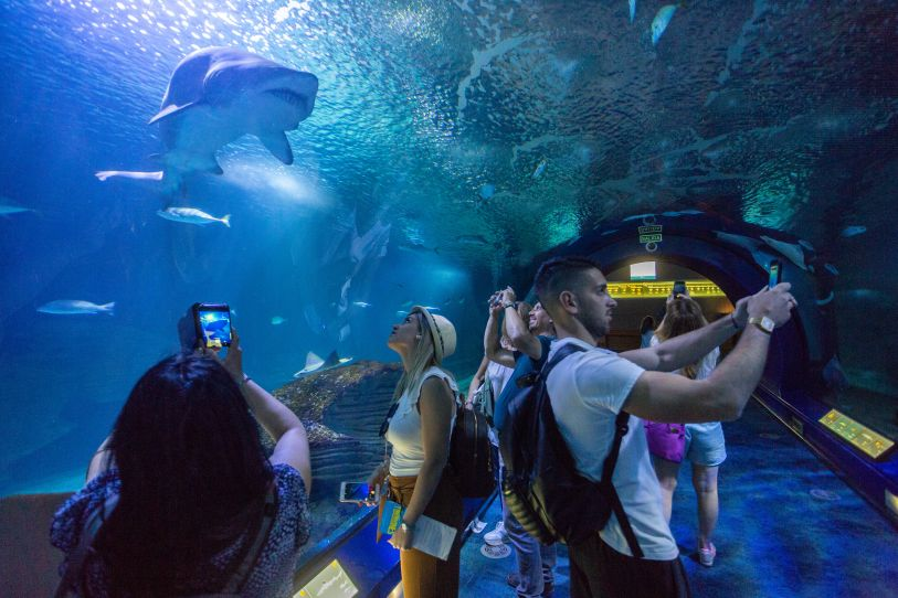 personas en túnel acuático