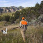 iniciación en la caza con perro