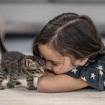 Derechos y obligaciones mascotas