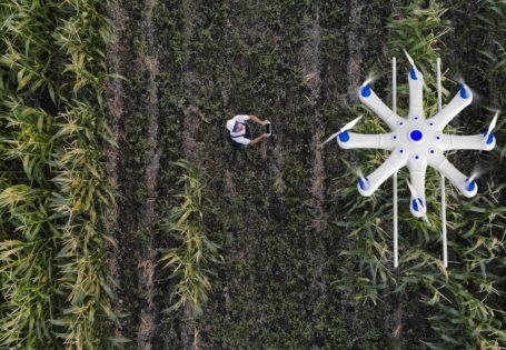riesgos en la transformación de la industria agrícola y ganadera